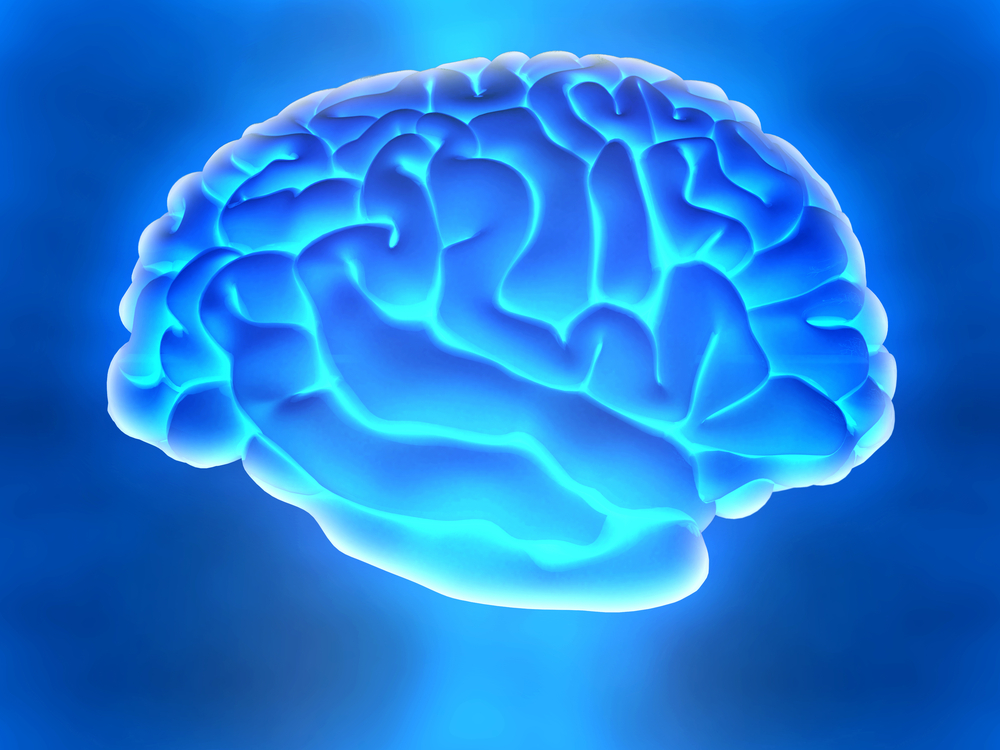 3D human brain from the side over a blue background
