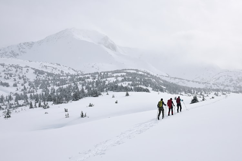 Winters in Alaska are cold and dark. This time of year can be the hardest adjustment for those who need their sun!